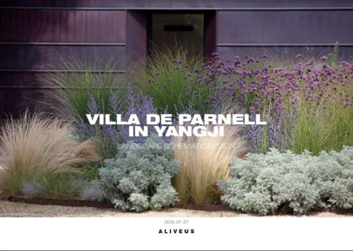VILLA DE PARNELL 1 (1).JPG