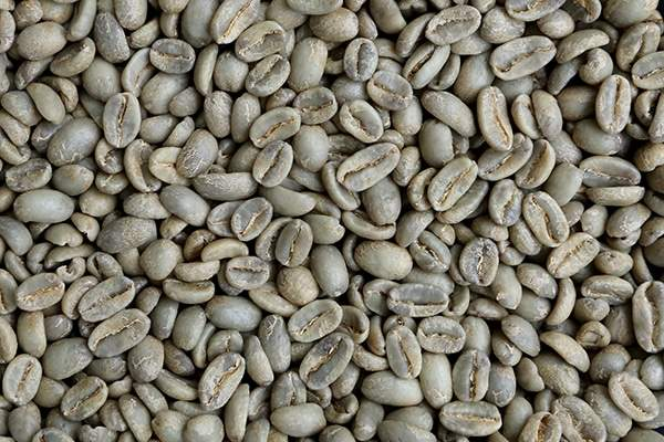GreenCoffee_600x400.jpg