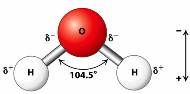 figure1_물의분자구조와극성.PNG