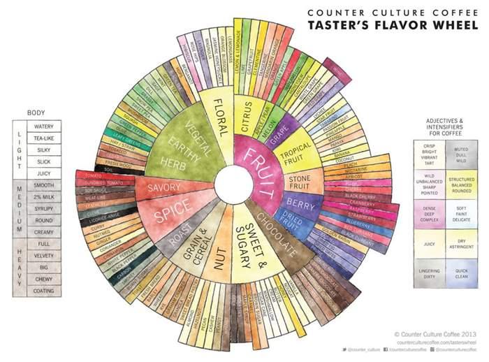 coffee_flavor_wheel.jpg