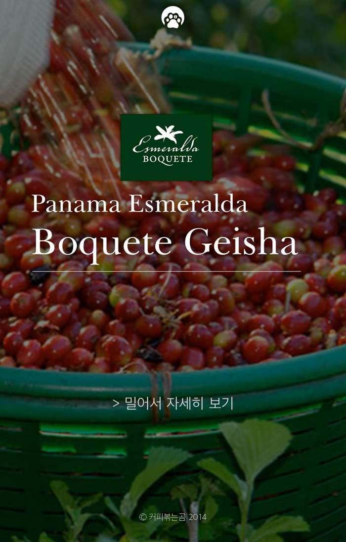 150217_Panama_Esmeralda1.JPG