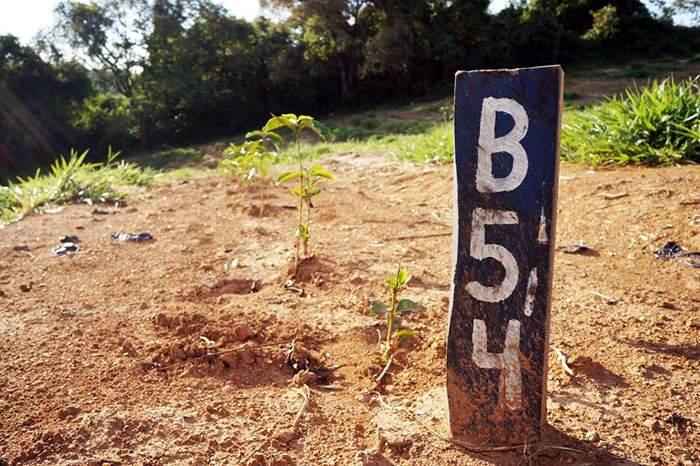 b-b54.jpg