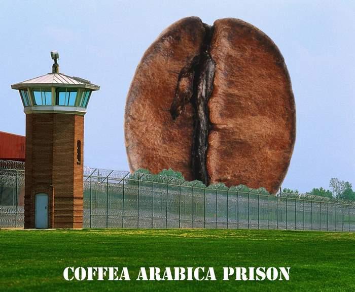 578e5f46806844a67fea9511_prison 2.jpg