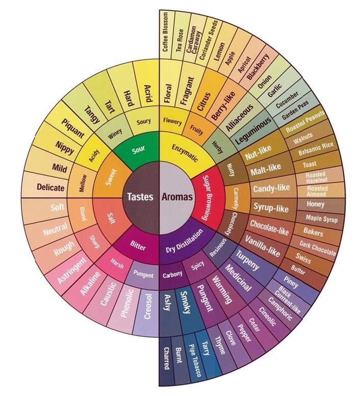 flavor-wheel.jpg